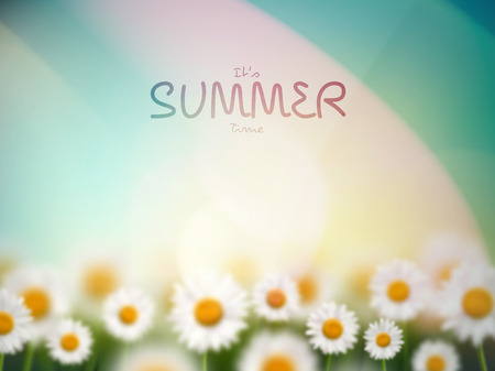 Natural summer background with camomiles, its summer time, eps 10