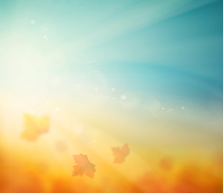 luz do sol: Fundo do outono, folhas da queda Ilustração