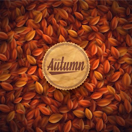 Listí pozadí, ahoj podzim Ilustrace