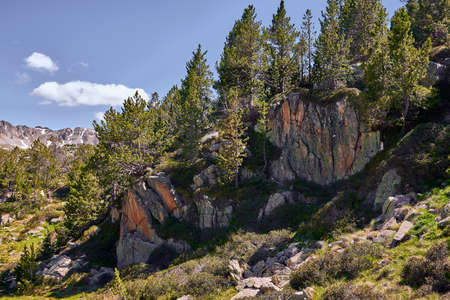 landscape with rocks and trees in the Andorran Pyrenees Stok Fotoğraf