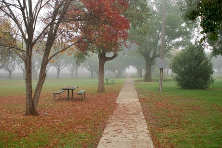 a park on a winters morning photo