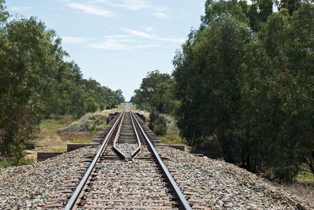A railway bridge over a creek photo
