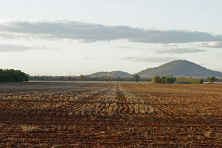 a farm paddock harrowed ready for sowing photo