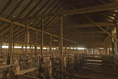 the inside of an older type shearing shed photo