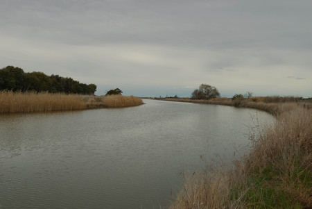 bens: a curve on an irrigation water canal with grass and reeds on the sides with a cloudy sky