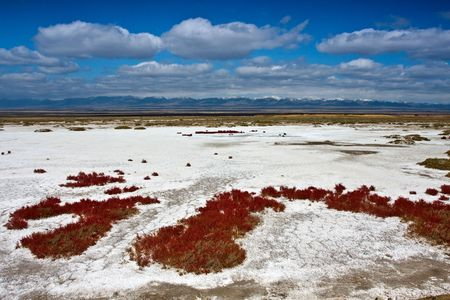 kwaśne deszcze: Suche jeziora Zdjęcie Seryjne