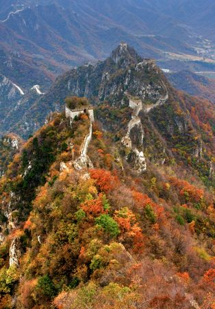 Manshan leaves in the Great Wall of China Stock Photo - 4307199