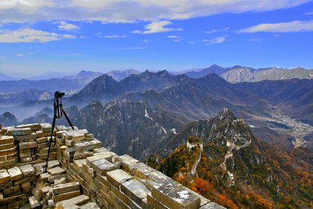 Manshan leaves in the Great Wall of China Stock Photo - 4307196