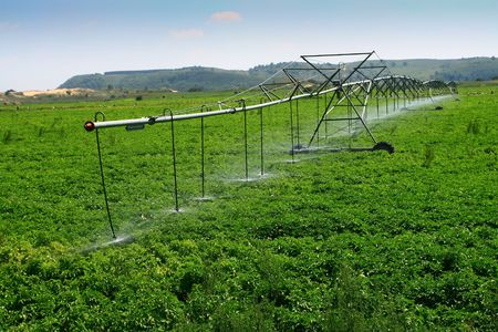 irrigated: Sprinkler irrigated farmland in the machine