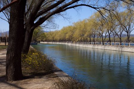 Blooming Flowers of Spring Park, the Summer Palace photo