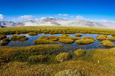 Wetlands in the Pamirs in Xinjiang scenery
