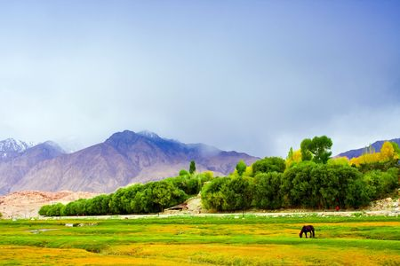The Pamirs in Xinjiang grassland scenery Stock Photo
