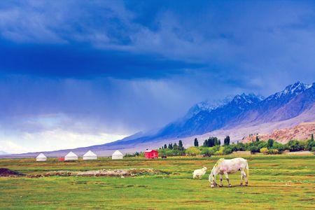 xinjiang: The Pamirs in Xinjiang grassland scenery Stock Photo