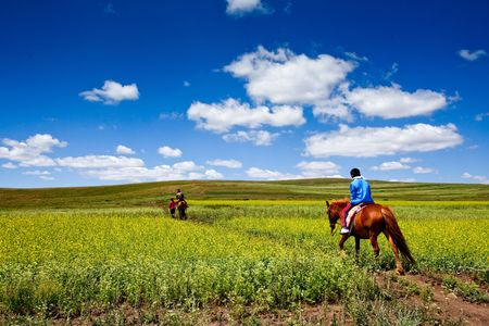The beautiful grassland in Inner Mongolia China Stock Photo - 5346094