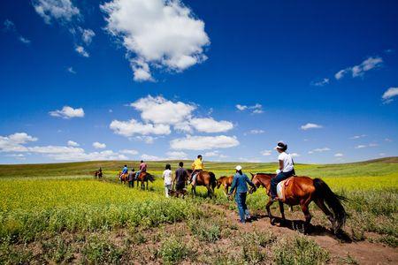 mongolia horse: The beautiful grassland in Inner Mongolia China