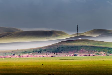dry cow: Beautiful China Inner Mongolia steppe