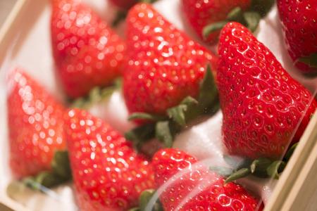 Strawberry closeup photo Stock Photo