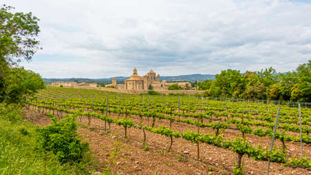 View over vineyard to monastery of Poblet in Spain