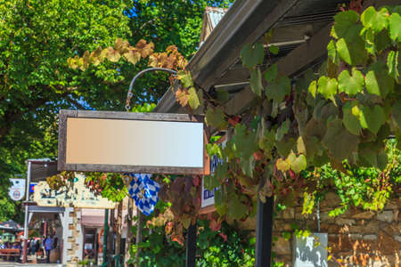 Empty sign surrounded by vine leaves
