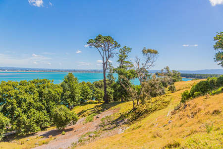 Picture from Mount Maunganui to Matakana Island on northern island of New Zealand in summer