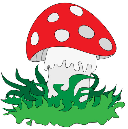 Amanita in the grass on a white background Vector