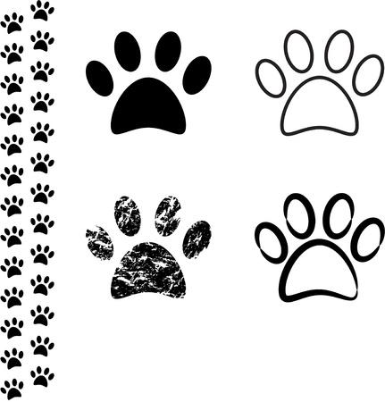 cat paw: Animal footprint