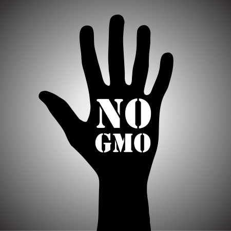 No gmo Stock Vector - 16945088
