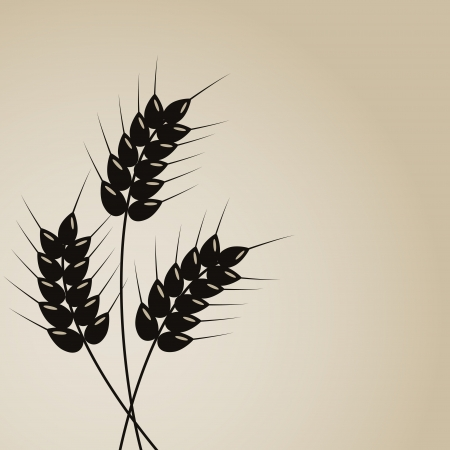 millet: Wheat background