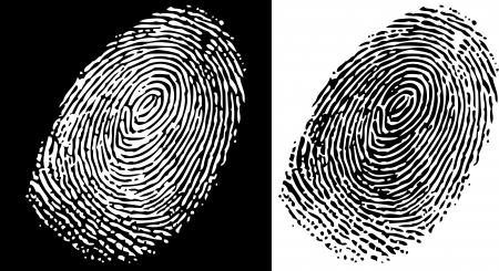 Fingerprint Stock Vector - 17193187