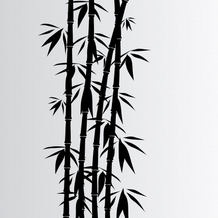 bamboo leaves: Gray bamboo background