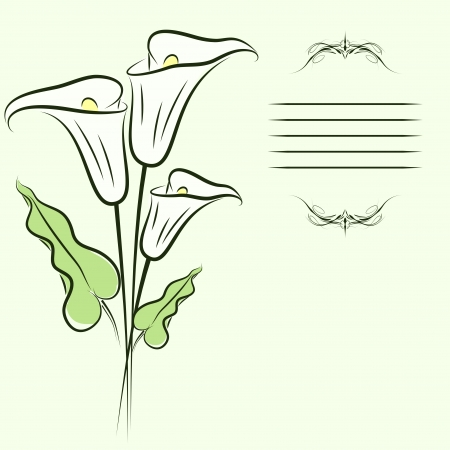 Greating card with callas flowers.