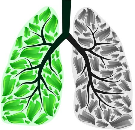 Green and gray human lungs. Illustration