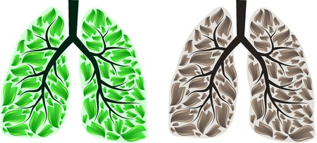 respiratory system: Human lungs with green and brown leaves. Illustration