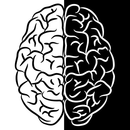 Black and white human brain.  Vector