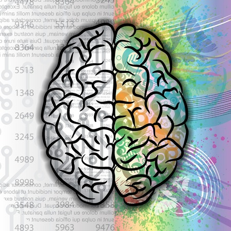 Human brain color pattern Vector
