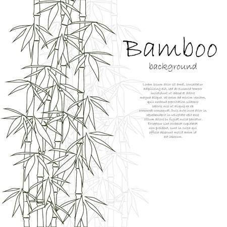 Bamboo background white  イラスト・ベクター素材
