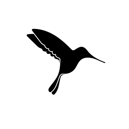 Black silhouette of small colibri isolated on white
