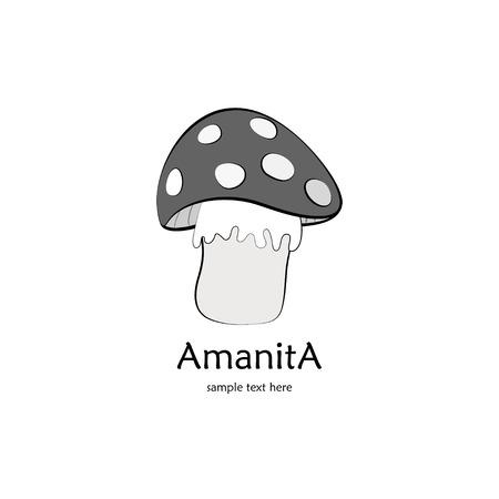 amanita: Gray amanita isolateb on white background with text