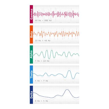 Conjunto de ondas cerebrales Oscilación diferentes colores