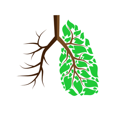 Human lungs with green leaves and without leaves
