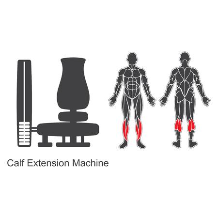 Gym calf extension machine