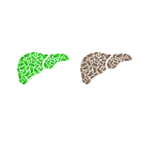 Liver silhouette with leaves.