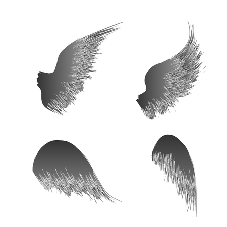 Black grunge bird wings silhouettes with ink splash isolated on white background