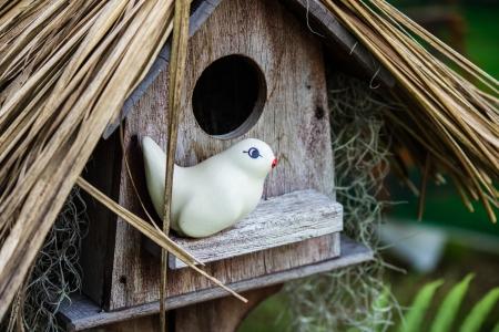bird s house: bird s house