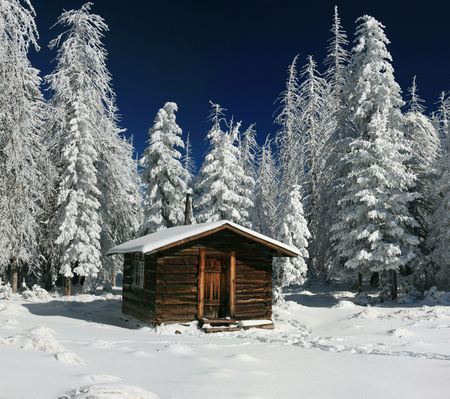 log on: Cozy Log Cabin Snowy in Arizona Winter