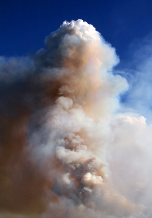 Wildfire Smoke Column photo