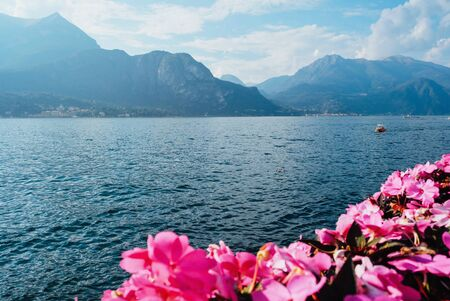 Beautiful view of Como Lake or Lago di Como in summer with pink blooms. Popular tourist attraction in Lombardy, Northern Italy. Copy space. Summer vacations concept. Banco de Imagens