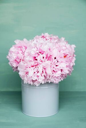 Beautiful bouquet of fresh pink peony flowers in full bloom in vase against mint green background, close up. Copy space. Mother's day, Birthday card. Still life with spring blossoms.