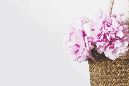 Heap of beautiful fresh pink peony flowers in full bloom in straw bag on white background, close-up. Blooming peonies. Copy space. Summer concept. Banque d'images