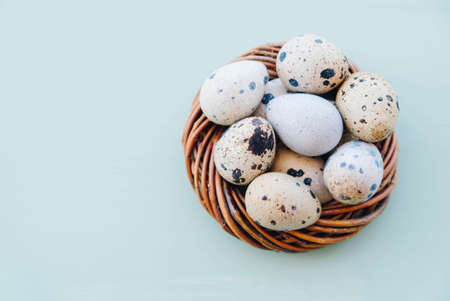 Happy Easter. Beautiful colorful quail eggs in bird nest on light blue background, close up. Copy space for text, flat lay. Minimal Easter composition. Springtime.
